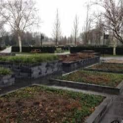 Begraafplaats Kampen