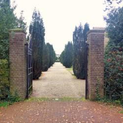Begraafplaats Laren