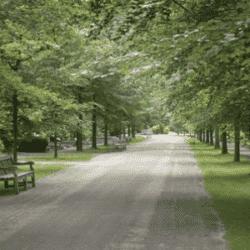 Begraafplaats Amersfoort Leusden