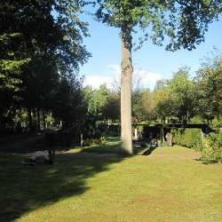 Begraafplaats Apeldoorn