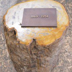 Grafsteen voor algemeen graf van versteend hout