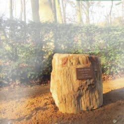 Versteend hout als urn grafsteen