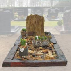 Versteend hout grafmonument